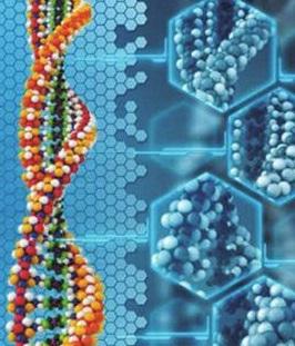 正刊征稿:基因组学